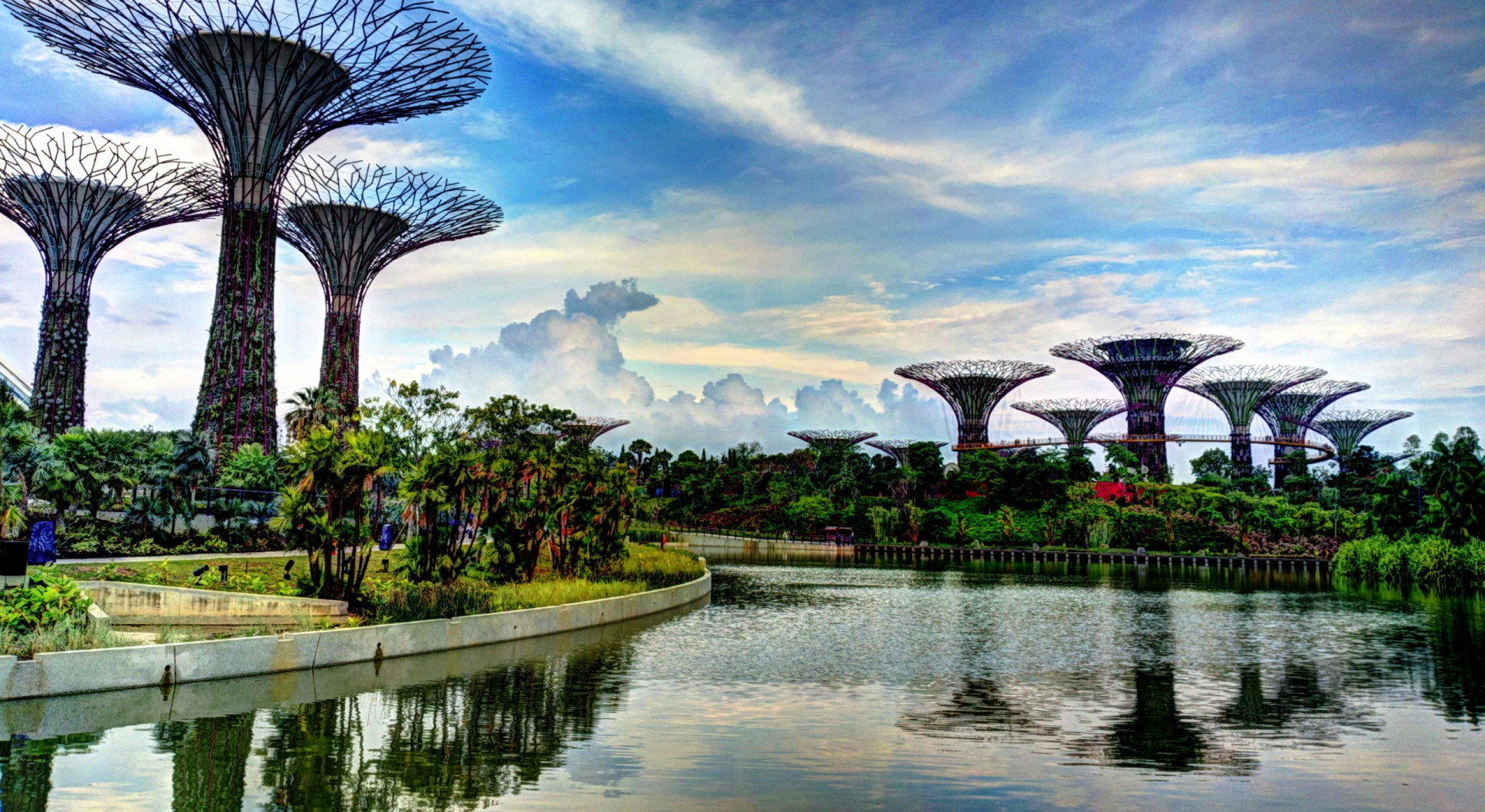 The Supertree Grove in Singapore (Khairul Nizam)