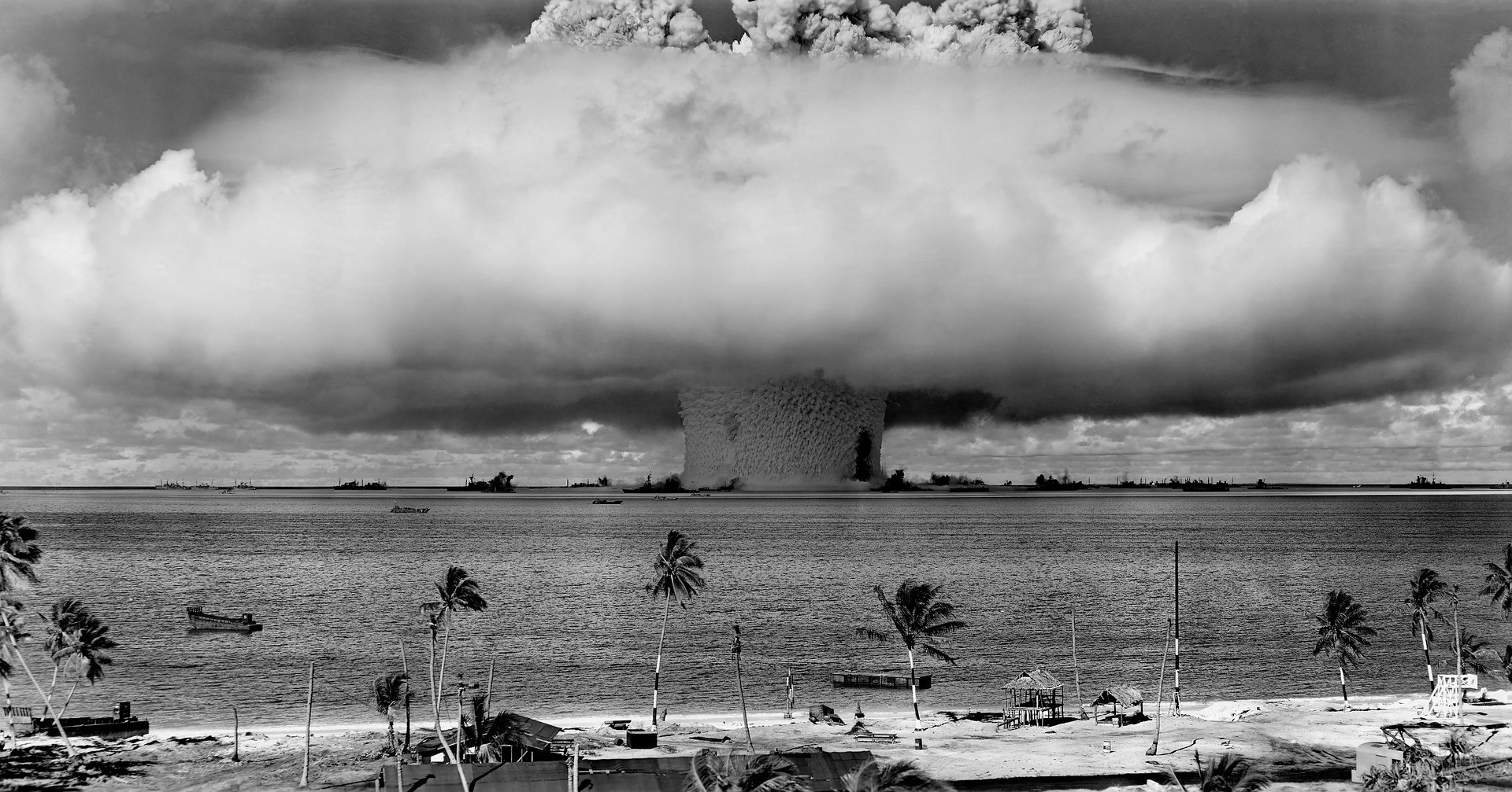 The recovery of marine ecosystems in Bikini Atoll is despite nuclear testing and largely due to human abandonment.