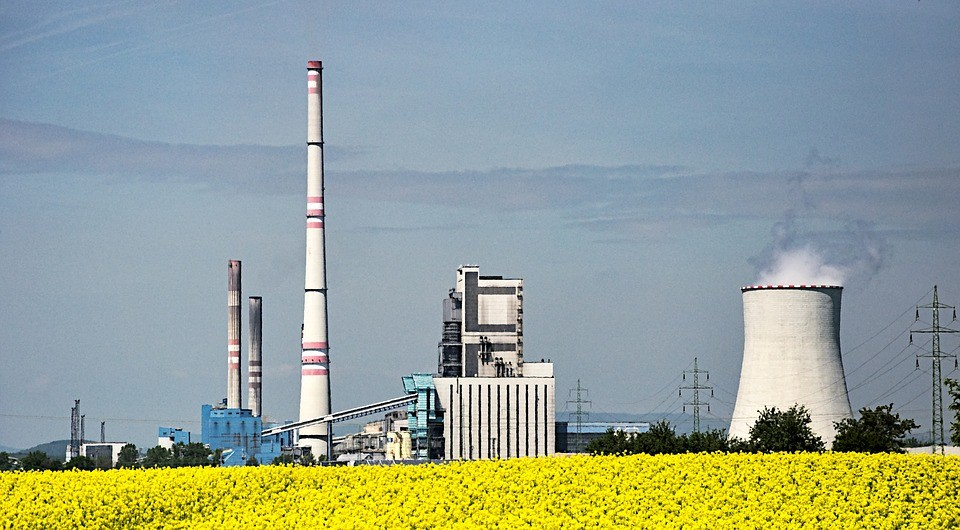 A rapeseed biofuel power station