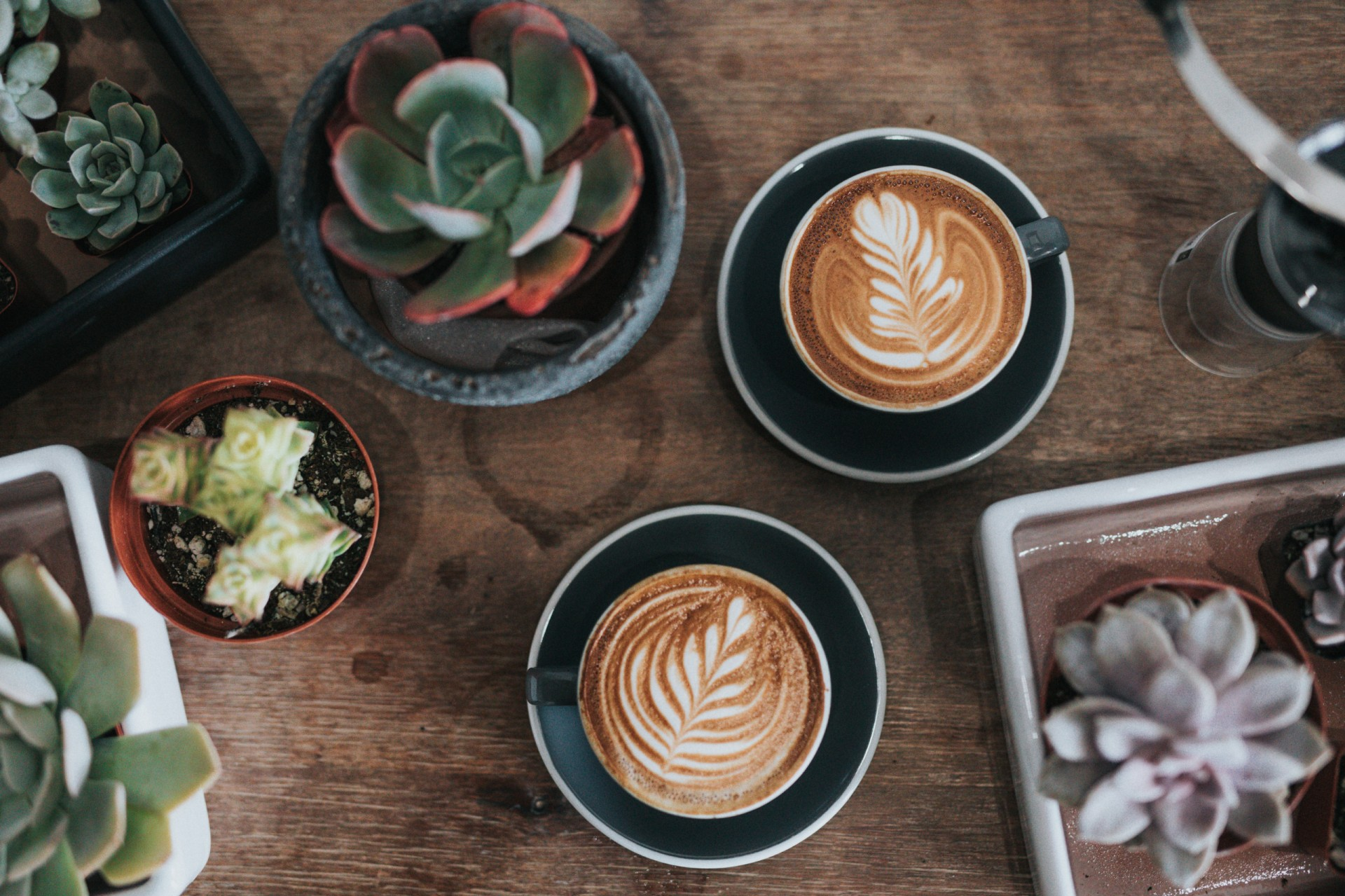 With plant-milks you can have your cappuccino and drink it too. Photo by Nathan Dumlao on Unsplash