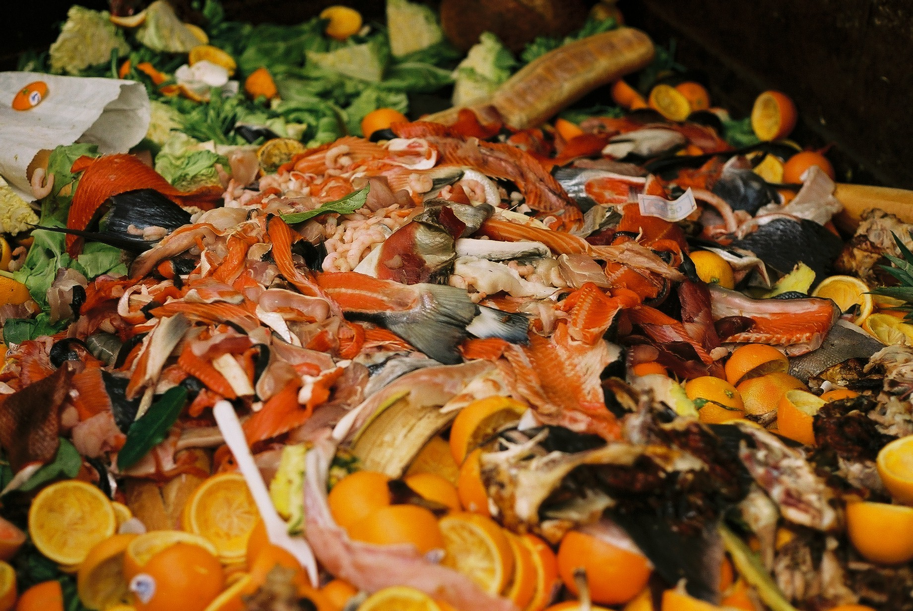 Winnow's mission is to reduce food waste in the restaurant industry