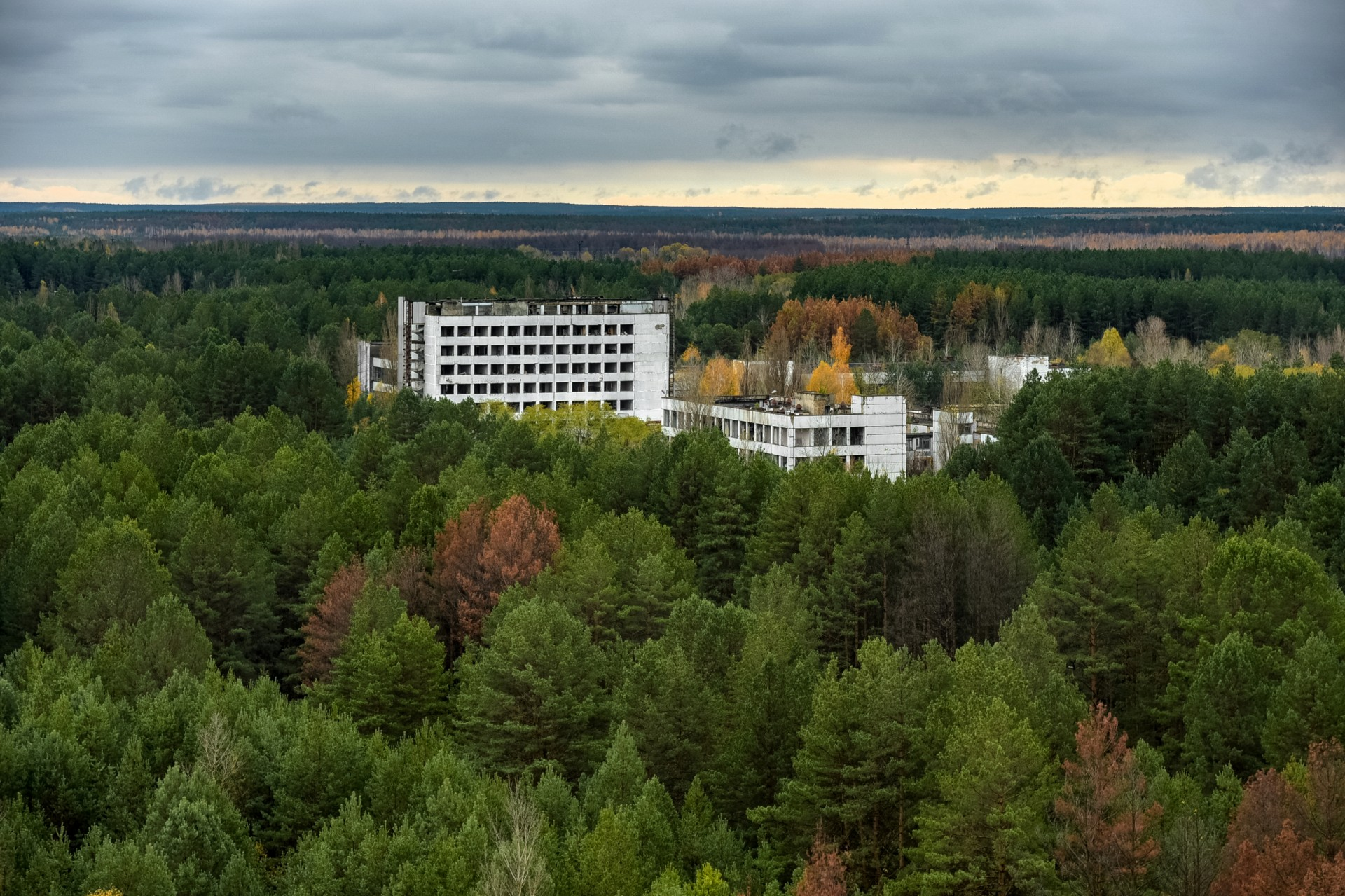 Forests have reclaimed the 'abandoned city' of Pipyat near Chernobyl. Photo by Jorge Franganillo via Flickr