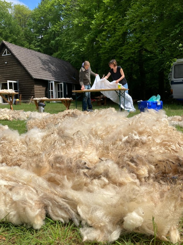 Wool felting on Maker Day — Photo courtesy of Tribal Knowledge